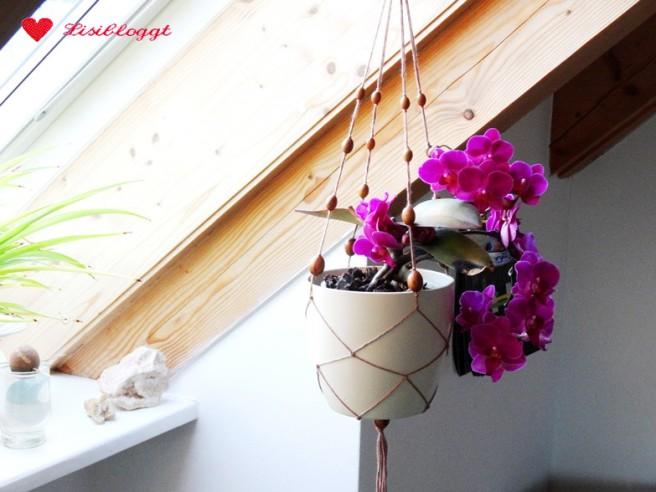 Anleitung: DIY Makramee-Blumenampel